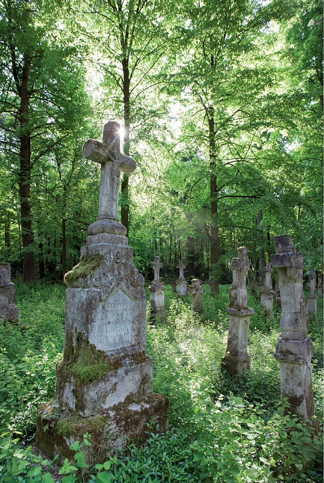 Cmentarz w Starym Bruśnie, na którym zachowało się około 300 nagrobków w tzw. stylu bruśnieńskim
